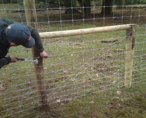 Box strainer on a deer fence
